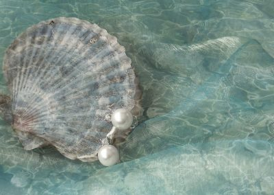 Pearls Shell  by Wendy Hannan