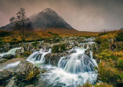 Scottish Mist by Janet Wippell