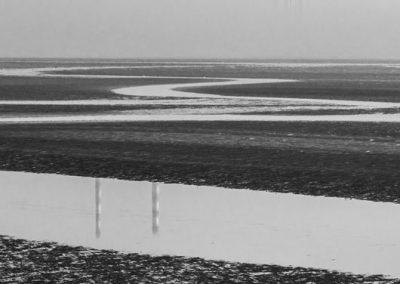 Morning Time Stroll by Robert Hackett