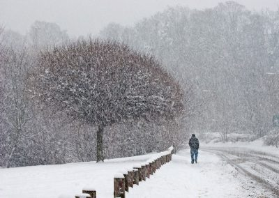 Winter Time by Joe Tulie
