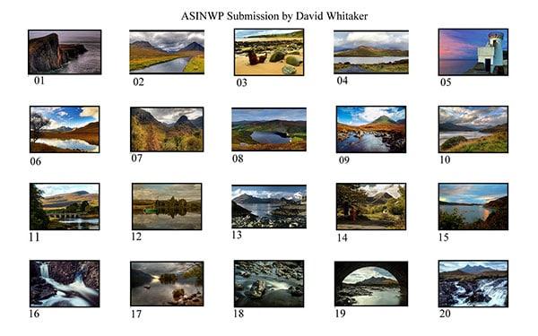 David-Whitaker-ASINWP-Panel