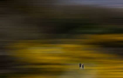 WWM May 2015 – Abstract Landscape