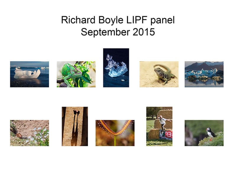 Richard Boyle LIPF Panel