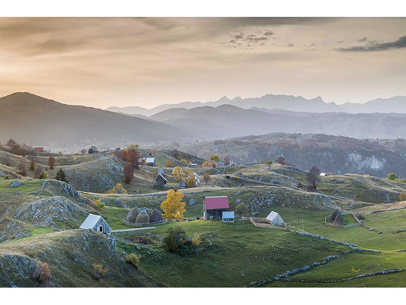 4. Janet Wippell – Montenegro Landscape795x597-C-004-Offshoot-2015-Shield