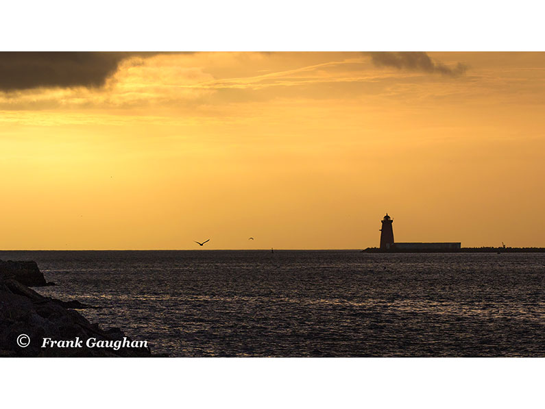 Poolbeg Lighthouse by Frank Gaughan
