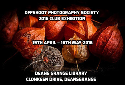 Club Event – Offshoot Annual Exhibition 2016 (19 April – 16 May)