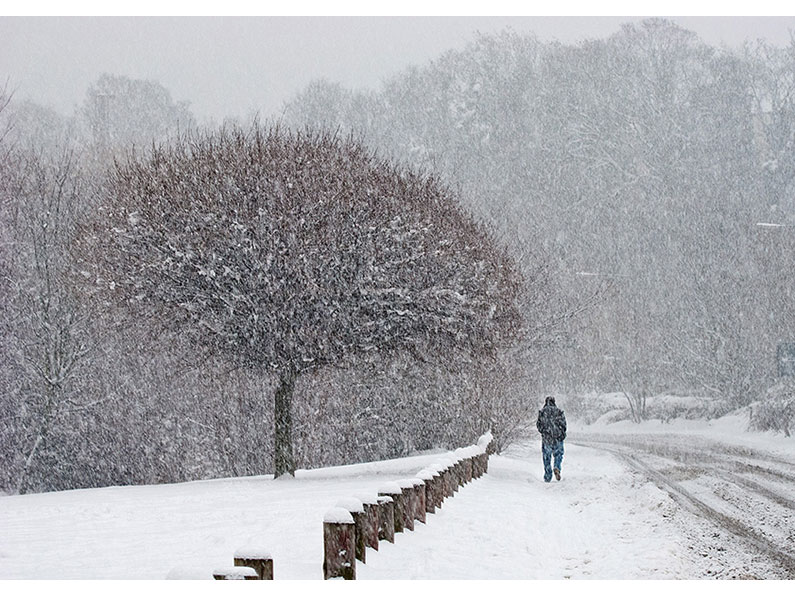 Highly Commended - Winter Time by Joe Tulie