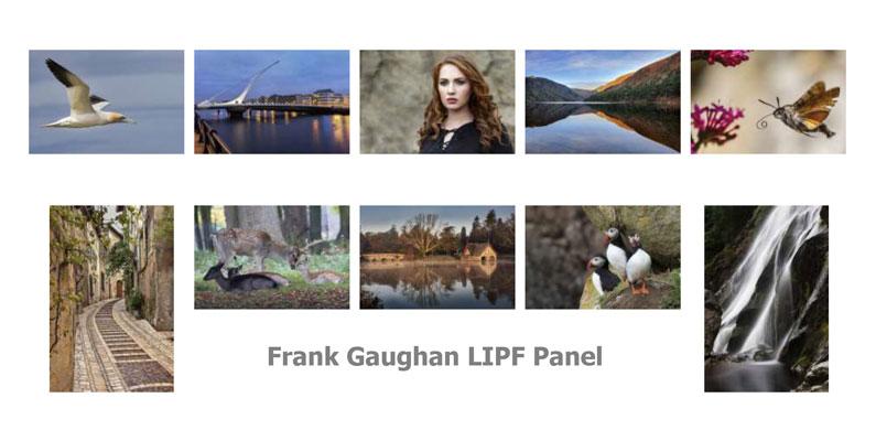 Frank-Gaughan-LIPF-Panel