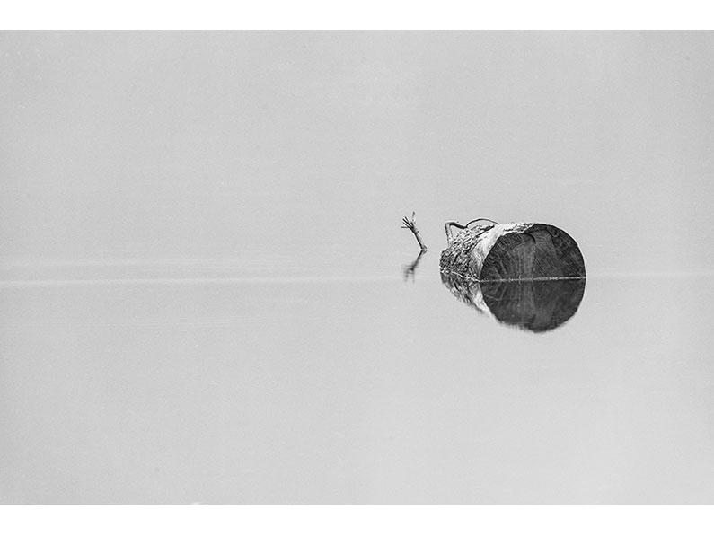 Adrift by Sheena Griffin