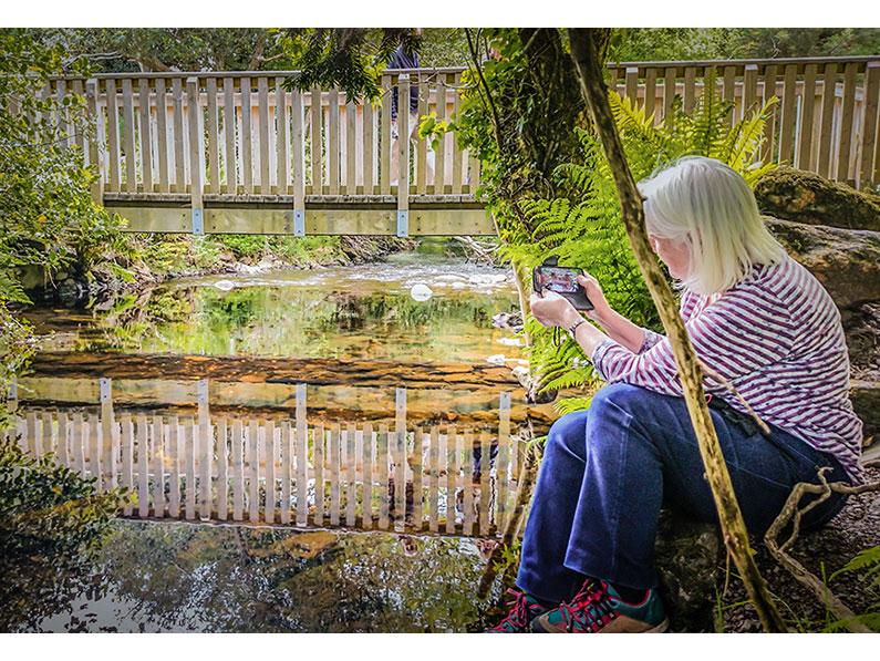 Glendalough Reflection by Jean Hartin