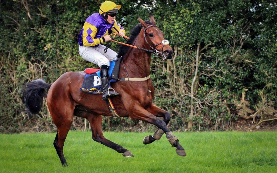 SWM December 2016 – Horse Racing