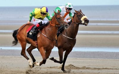 Club Outing – Laytown Races