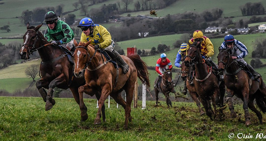 Club Outing – Point to Point Tinahely