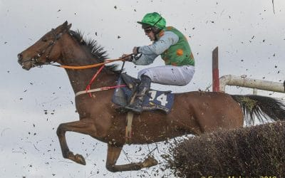 Club Outing – Tinahely Point to Point