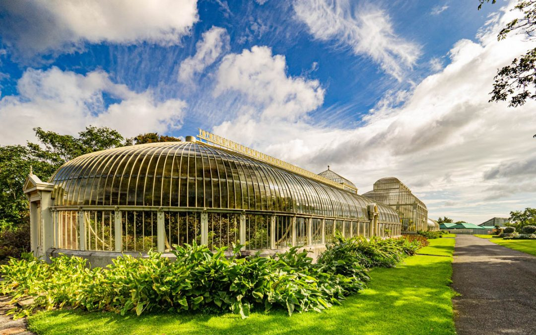 Club Outing – Glasnevin National Botanic Gardens