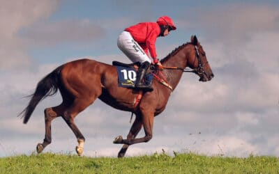 Club Outing – Oldcastle Point-to-Point